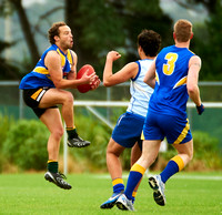 2010-2011 WAFL: Practice Session