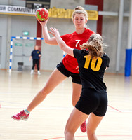 2014 Wellington League: Womens Games