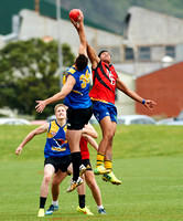 2014 WAFL: Demons vs Eagles